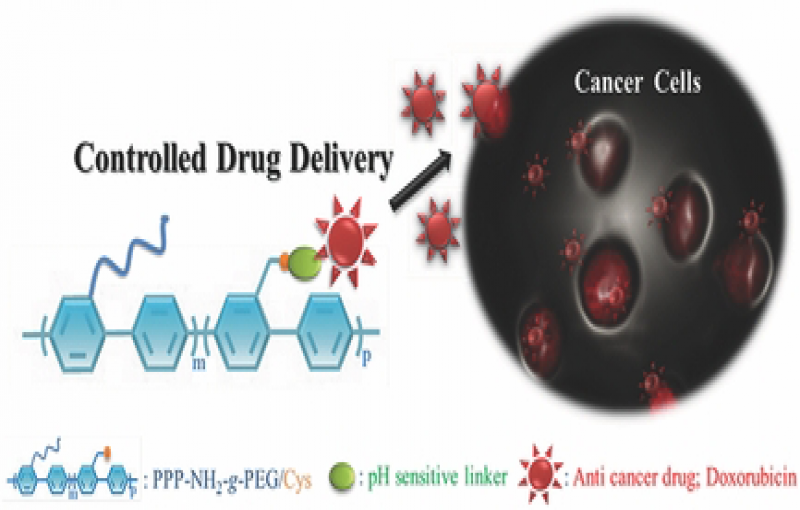 Functional Platform for Controlled Drug Release and Radiotherapy