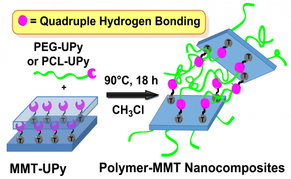 Polymer-Clay Nanocomposites through Multiple Hydrogen-bonding Interactions