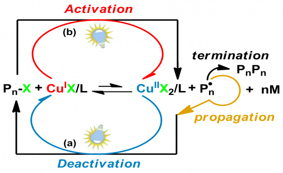 Photoinduced Controlled Radical Polymerization