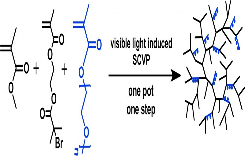 Visible Light Induced One-Pot Synthesis of Amphiphilic Hyperbranched Copolymers