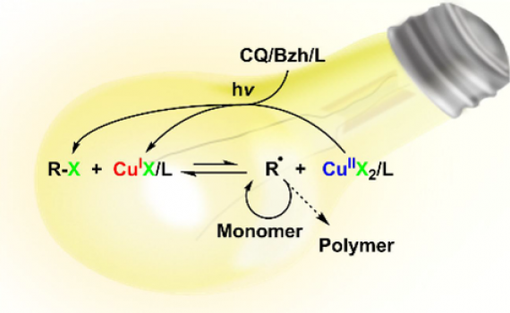 Photoinduced Reverse ATRP of Methyl Methacrylate Using Camphorquinone-Benzhydrol System
