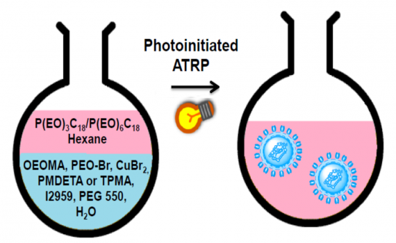 Photoinitiated ATRP in Inverse Microemulsion