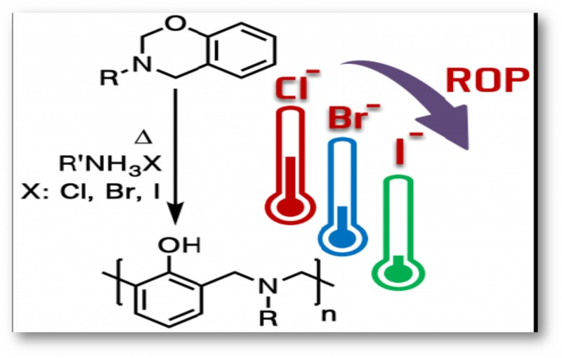 Counterion Effect of Amine Salts on Ring-Opening Polymerization of 1 3 Benzoxazines